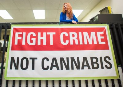Dale Fight Crime Not Cannabis