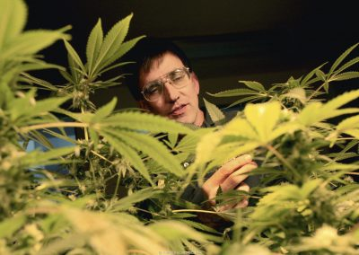 Oaksterdam University president Richard Lee looks at students' cannabis plants in Oakland