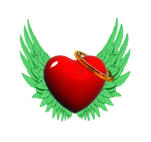 Angel Care 360