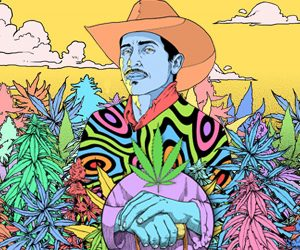 Expoweed Mexico