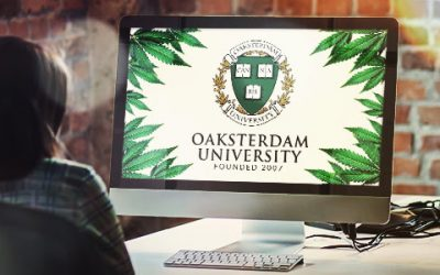 Oaksterdam University Available Both Online & On Campus