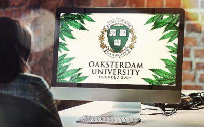 Oaksterdam University | Quality Training for the Cannabis