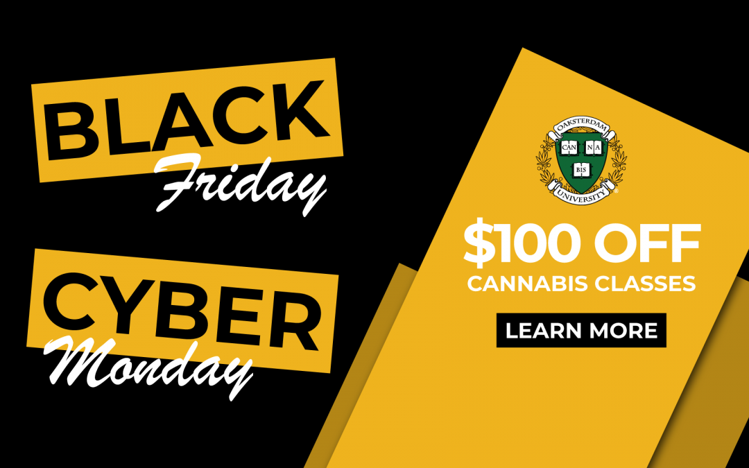 Black Friday & Cyber Monday — $100 Off