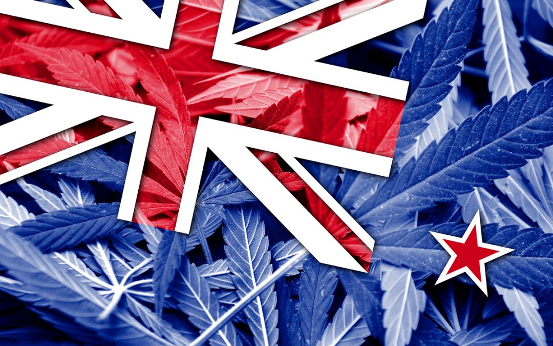 New Zealand Prohibits Medical Cannabis Edibles