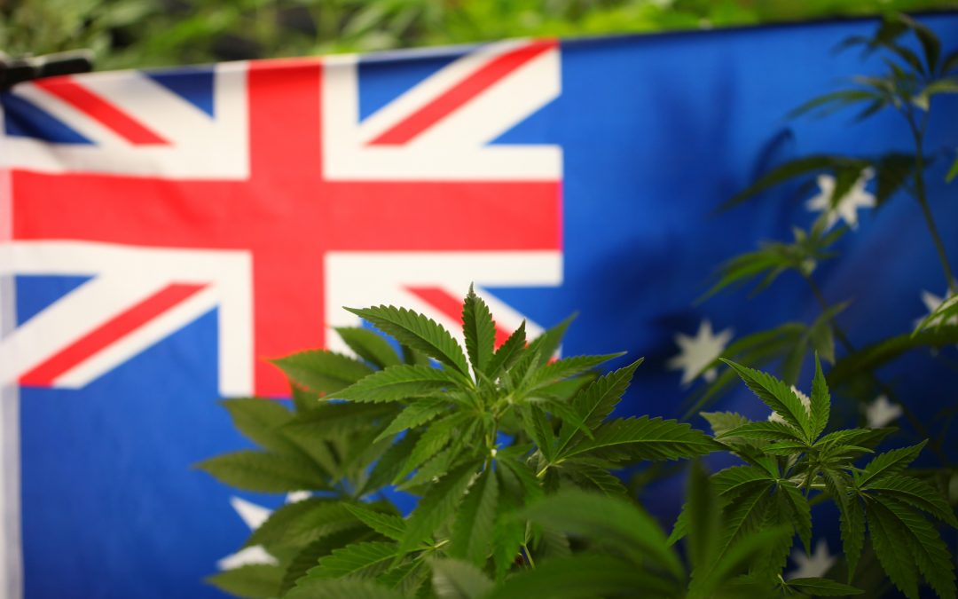 Cannabis Is Now Legal in Australia's Capital